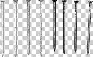 Metal Nail PNG