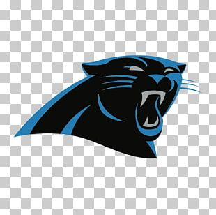 Bank Of America Stadium Carolina Panthers NFL New York Giants Dallas Cowboys PNG