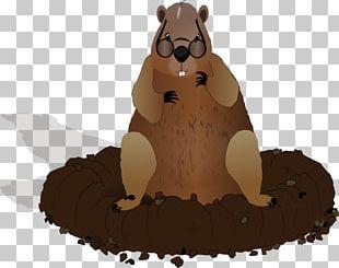The Groundhog Punxsutawney Groundhog Day PNG