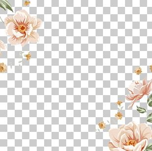 Flower Stock Photography Pattern PNG