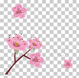Cherry Blossom Poster Illustration PNG