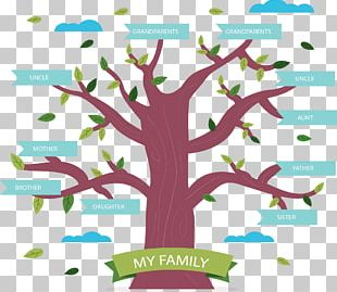 Family Tree Genealogy Book PNG