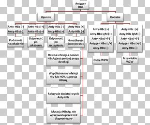 Hepatitis B Virus Viral Hepatitis HBsAg PNG
