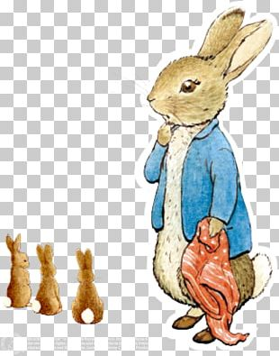 Domestic Rabbit The Tale Of Peter Rabbit PNG