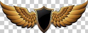 PFC Berkut Armyansk Buffalo Wing FC Ocean Kerch Logo PNG