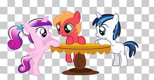 Princess Cadance Big McIntosh Pony Twilight Sparkle Colt PNG