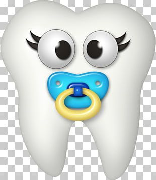 Human Tooth Deciduous Teeth Tooth Brushing PNG