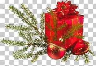Christmas Ornament Christmas Gift-bringer Santa Claus PNG