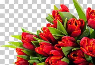 Tulip Flower Bouquet Desktop March 8 PNG