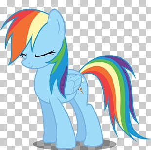 Rainbow Dash Twilight Sparkle Rarity Applejack Scootaloo PNG