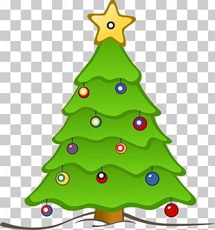 Christmas Tree Cranbrook Education Campus Santa Claus PNG