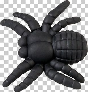 Spider Paper Office Supplies Pencil PNG