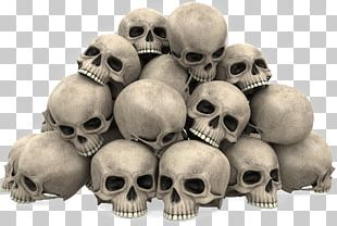 Skull Stock Photography Illustration PNG