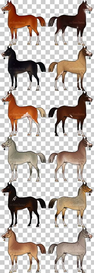 Canidae Deer Horse Mammal Dog PNG