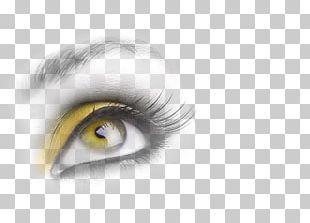 Eye Iris Face Portrait Photography PNG