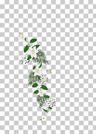 Twig Floral Design Cut Flowers Plant Stem Leaf PNG