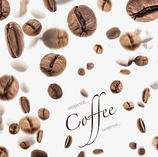 Coffee Beans Background Decoration PNG