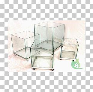 Vase Glass Rhapis Excelsa Plants Interior Design Services PNG