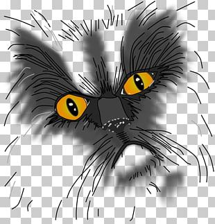 Whiskers Kitten Black Cat Grumpy Cat PNG