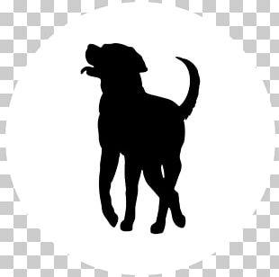 Labrador Retriever Puppy Dog Breed Golden Retriever Pembroke Welsh Corgi PNG