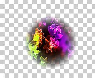 Violet Purple Flower Desktop Petal PNG