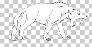 Line Art Drawing Cat /m/02csf Tail PNG