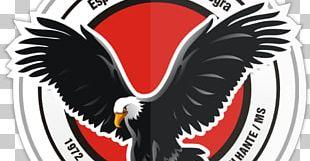Mato Grosso Do Sul Esporte Clube Águia Negra Campeonato Sul-Mato-Grossense Corumbaense Futebol Clube Esporte Clube Comercial PNG