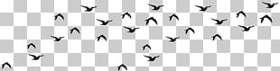 Bird Black And White Animal Migration Monochrome Photography PNG
