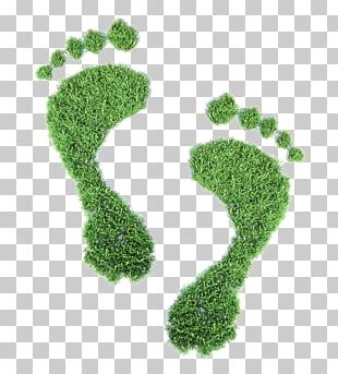 Ecological Footprint Ecology Carbon Footprint Concept Illustration PNG
