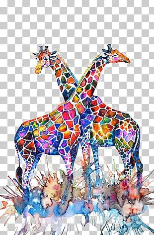 Giraffe Watercolor Painting Illustration PNG