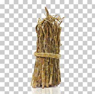 Menma Sushi Bamboo Shoot PNG
