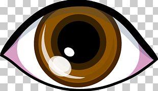 Eye Brown PNG