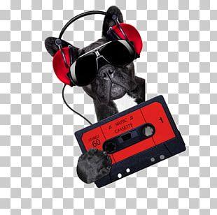 Dog Stock Photography Disc Jockey Nightclub Music PNG