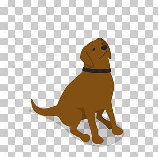Labrador Retriever Puppy Dog Breed Companion Dog PNG