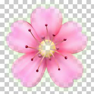 Flower Emoji Sticker Petal PicsArt Photo Studio PNG