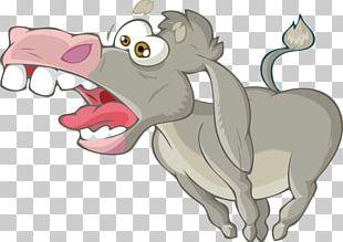 Donkey Cartoon Photography Illustration PNG