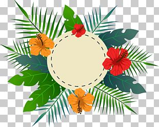 Tropical Flower Leaves The Title Box PNG