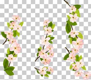 Blossom Encapsulated PostScript PNG