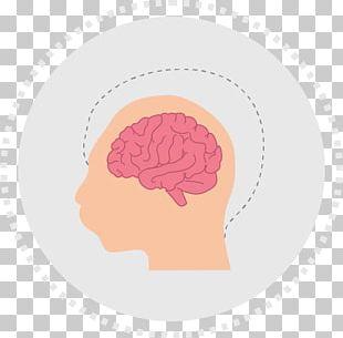 Brain Neurology PNG
