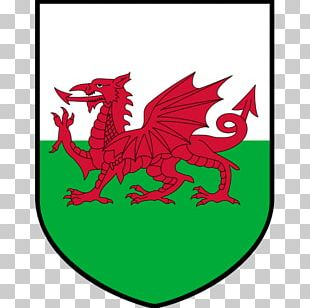 Flag Of Wales Welsh Dragon Flag Of The United Kingdom PNG