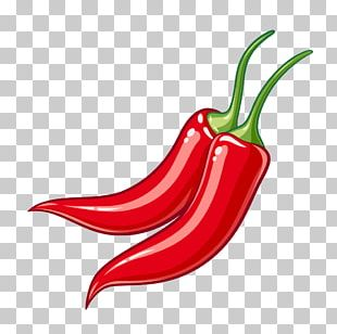 Serrano Pepper Bird's Eye Chili Cayenne Pepper Tabasco Pepper Chili Pepper PNG