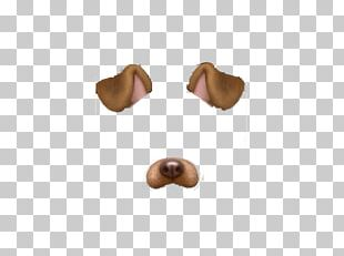 Dog Photographic Filter PNG