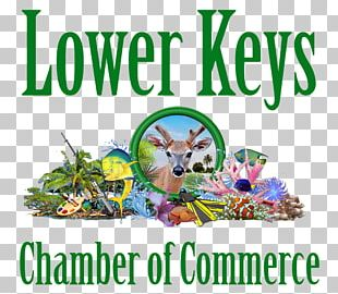 Key West Florida Keys Lower Keys Chamber Of Commerce Sea Vista Estate PNG