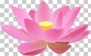 Lotus Cars Lotus Evora PNG