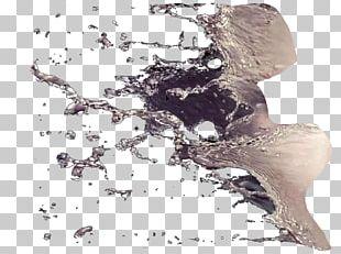 Tutorial Water Splash Ink PNG