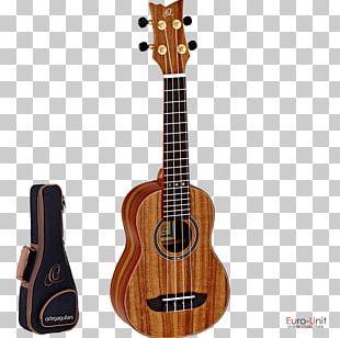 Ukulele Soprano Guitar Musical Instruments Concert PNG
