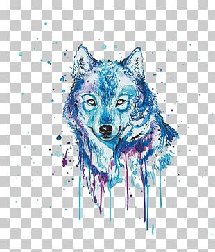 Gray Wolf Watercolor Painting Oil Painting PNG