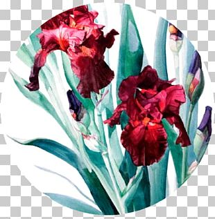 Donatello Watercolor Painting Art Floral Design PNG