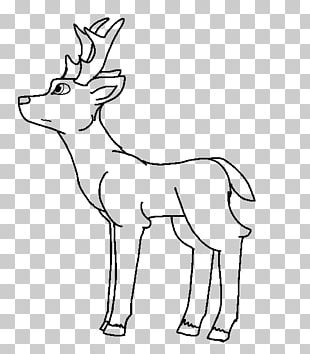 Reindeer Line Art Red Deer Elk PNG