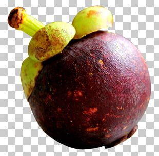 Purple Mangosteen PNG